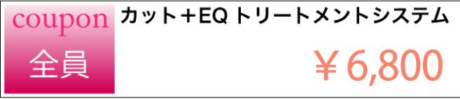 【クーポン】カット+EQトリートメント¥6,800