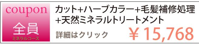 カット+ハーブカラー+毛髪補修処理+天然ミネラルトリートメントのクーポン ¥15,768