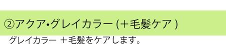 アクアグレイカラー(+毛髪ケア)
