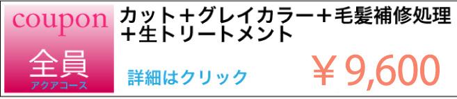 カット+グレイカラー+生トリートメント+生トリートメント クーポン ¥9.600 詳細はクリック