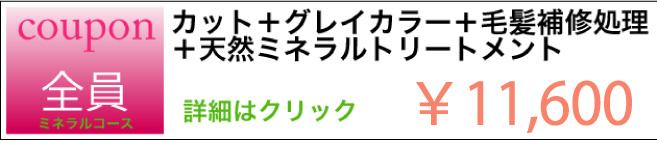 カット+グレイカラー+毛髪補修処理+天然ミネラルトリートメントのクーポン ¥11.600 詳細はクリック