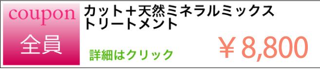 カット+天然ミネラルミックストリートメントのクーポン ¥8,800 詳細はクリック
