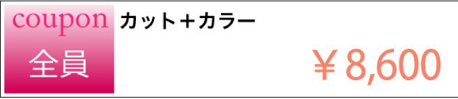 カット+カラーのクーポン ¥8,600