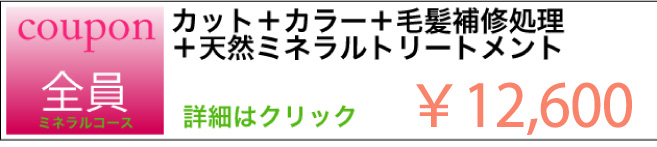 カット+カラー+毛髪補修処理+天然ミネラルトリートメントのクーポン ¥12,600 詳細はクリック