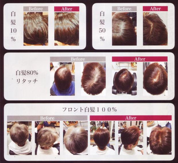 ノンジアミン•セーフティーカラーの染色した髪の参考画像